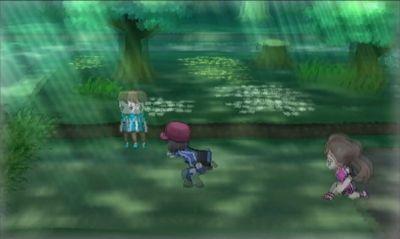 Bosque Pokémon X Y